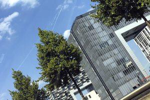 Projektierung · Architektin AKNW Dipl.-Ing. Lubov · Architekt / Architekturbüro Köln